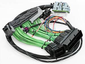 Boomslang - Boomslang AEM EMS-4 Plug N Play Harness: Scion xA / xB 2004 - 2005