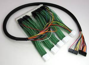 Boomslang - Boomslang AEM F/IC-6 Plug N Play Harness: Scion tC 2007 - 2010