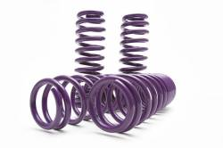 D2 Racing - D2 Pro Series Lowering Springs: Scion FR-S 2013-2016; Toyota 86 2017-2019; Subaru BRZ 2013-2019 - Image 1