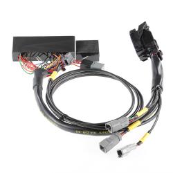 SCION ENGINE PERFORMANCE - Scion Tuning Parts - Boomslang - Boomslang AEM Infinity 506 Plug N Play Harness: Scion xA / xB 2006